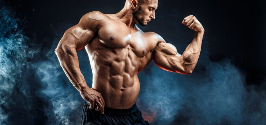 Estrogen Blocker Bodybuilding
